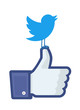 "Twitter's bird landed on Facebook's ""like"" finger"