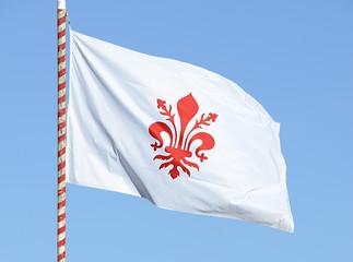 Bandiera con giglio