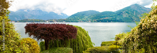 forest on the background of the Italian lake Como