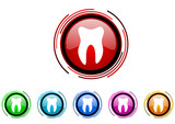 tooth vector glossy web icon set