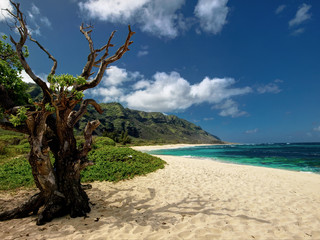 Mokuleia Beach, Hawaii