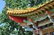 Chinese garden in Zurich