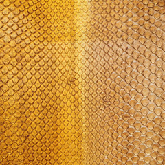dyed python skin texture as background