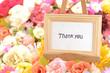 メッセージ―Thank you