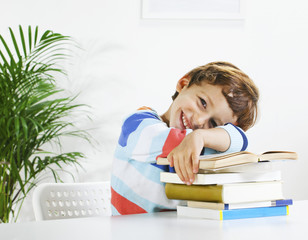 Schoolboy studying in home.