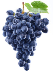 Grapes on white background.