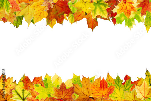 Autumn leaves frame, isolated on white.