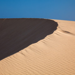barkhan dune, evening light