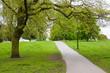 Постер, плакат: Sentiero tra gli alberi Hyde Park Londra