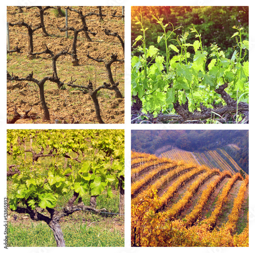 Four Seasons In Provence