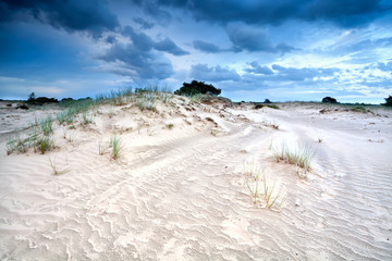 wind and clouds over sand dune