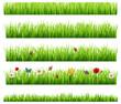 Obrazy na płótnie, fototapety, zdjęcia, fotoobrazy drukowane : Green grass collection