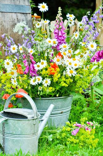 Foto Spatwand Madeliefjes Feldblumen