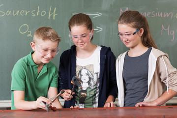 Chemie Versuch, Verbrennung von Eisenwolle