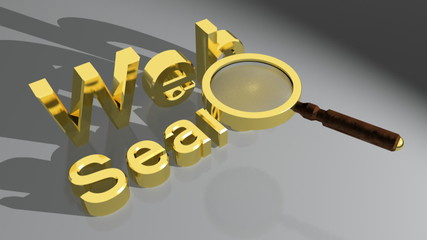 Web Search with magnifier