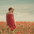 young beautiful girl in poppy field