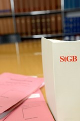 2 Strafakten mit Bücherregal und Buch