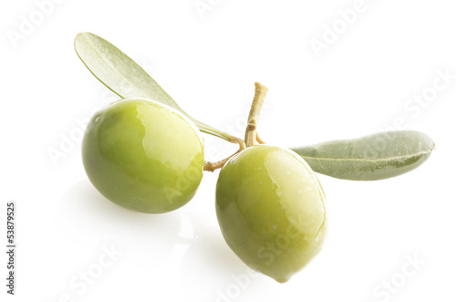 Two green olives on branch with leaves