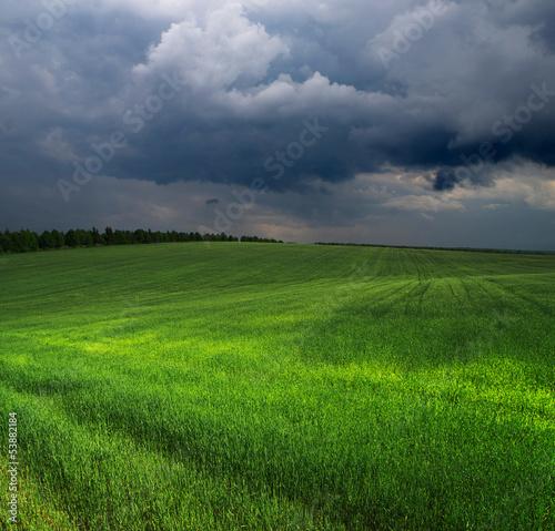 Fototapeten,himmel,blau,wiese,sommer