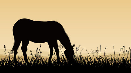 Horizontal illustration of horse grazing.