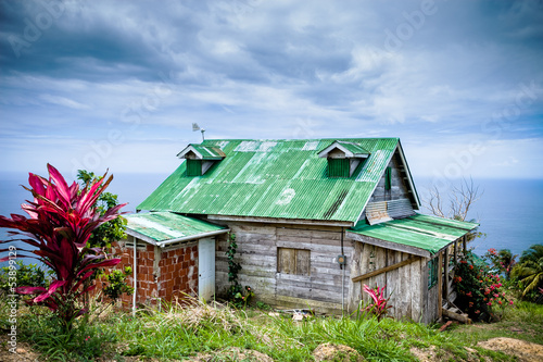 house with green roof in the caribbean