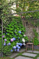 Giardino con Ortensie sul lago Maggiore