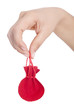 Stuffed red bag