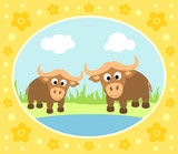 Safari background card with buffaloes