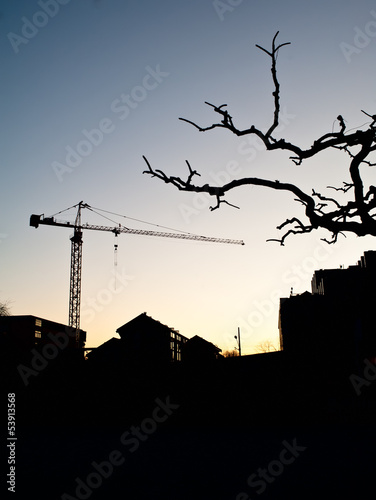 Crane,building and leafless tree in winter