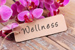 canvas print picture - Wellness - Label
