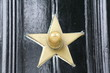 Star Door Handle