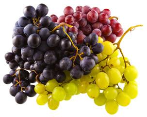 raisin blanc, raisin, rosé, raisin noir