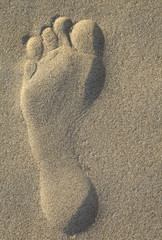 Impronta sulla sabbia all'alba