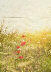 paper summer flowers