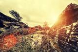 rocky terrain sunshine