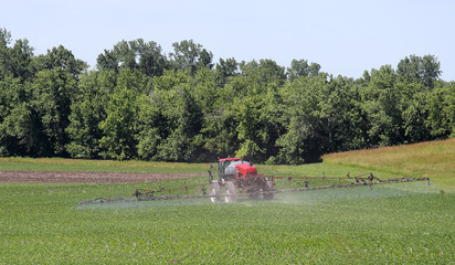 Spraying a Soybean Feild