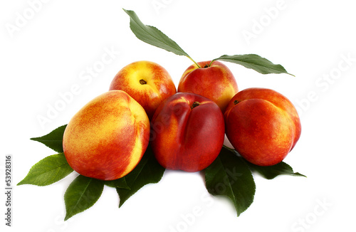 Five nectarines isolated on white background