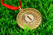 Gold medal on grass background