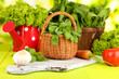 Fresh herb in basket on wooden table on natural background