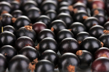 Fresh black currant close up