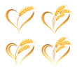 Abstract wheat ears icons with heart element