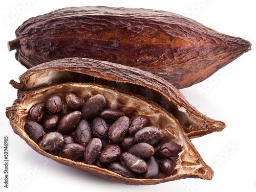 Cocoa pod - 53946905