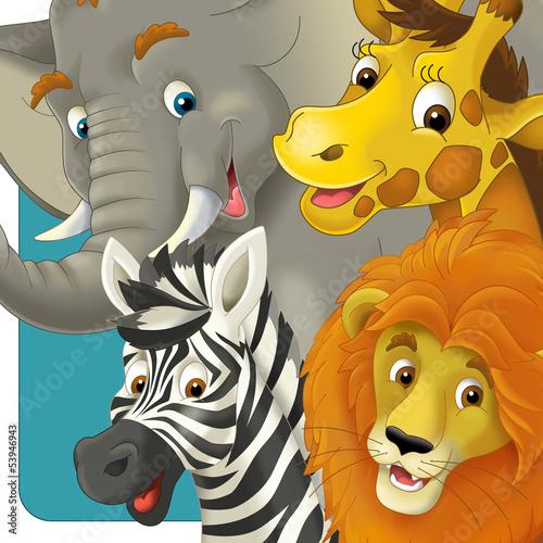 zwierzeta-safari-slon-zyrafa-zebra-lew-ilustracja-dla-dzieci