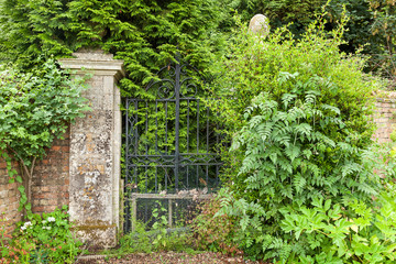 Overgrown black wrought iron gates.
