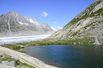 Gletschersee & Aletschgletscher