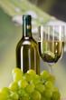 trauben und weißwein