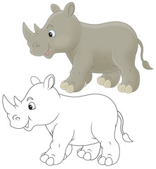 Grey rhinoceros