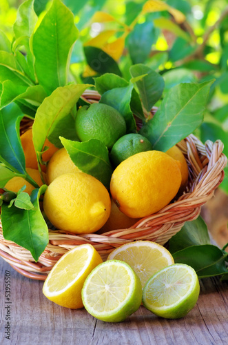 Slices of ripe lemons on table