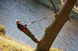 man on tree - suspension workout
