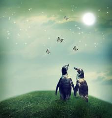 Penguin couple in fantasy landscape